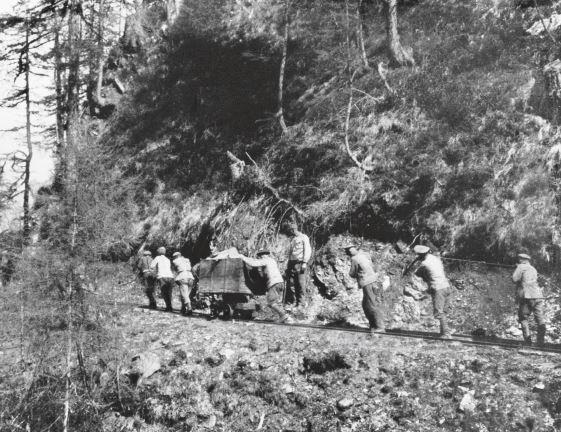 ©Bildarchiv Austria_Maschaftszug mit Erzhunt um 1916