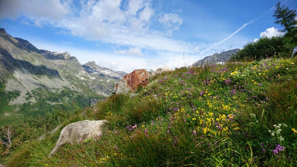 Wanderparadies_Hochgebirge_7